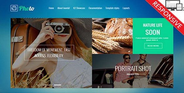 Shop | Freelancing Design and Download Responsive Themes